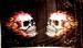 Vlag Burning Skulls
